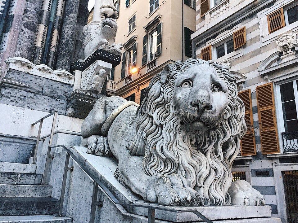 лев в италии генуя фото города