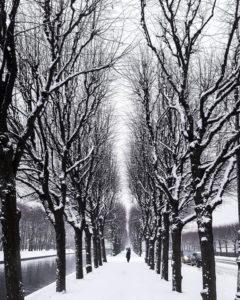 san pietroburgo in inverno4