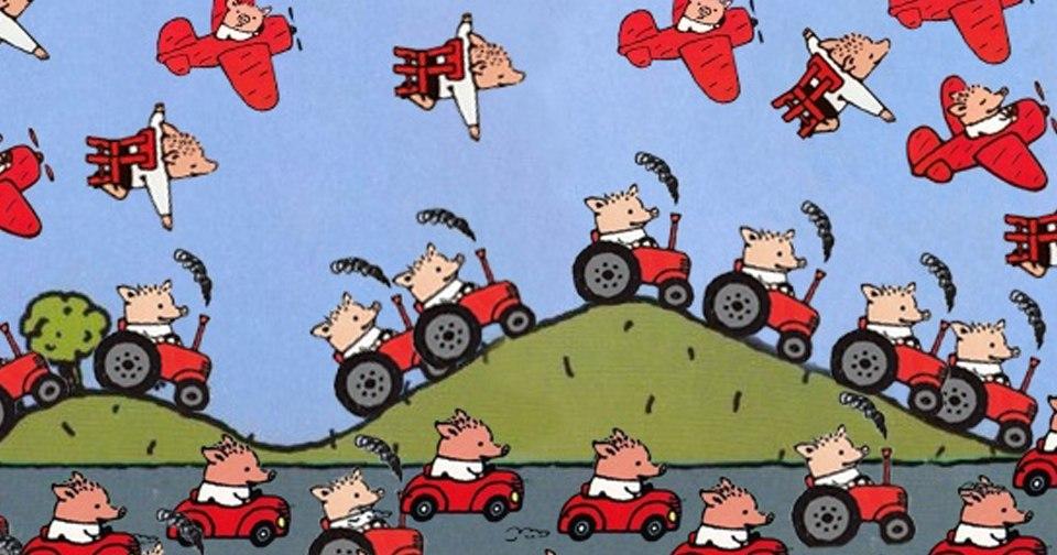 путешествия свинок